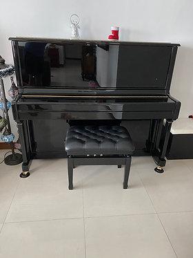 Hailun H5P - 3.5 Years Old