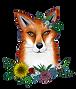 Fox12.png