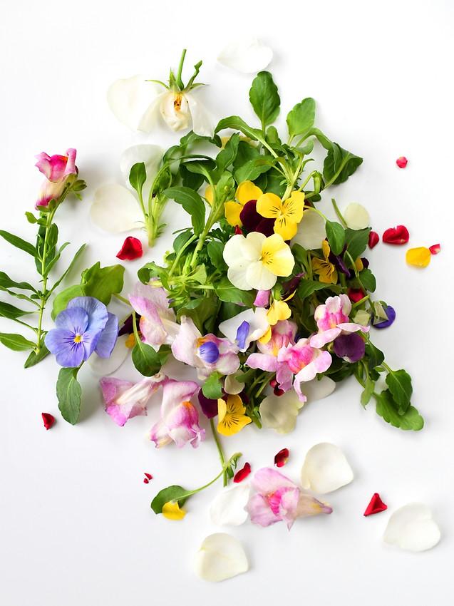 Edible flowers on white background..jpg