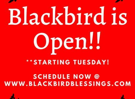 Blackbird is Open for Business!!
