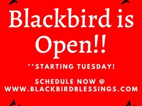 Blackbird is Open for Business!!