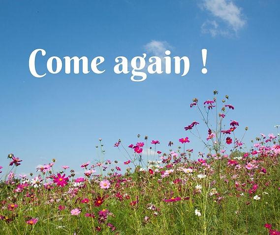 Come again !.jpg