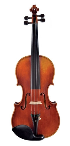 Juzek Beginner Violin Outfit