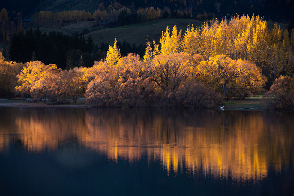Autumn. Arrowtown. Lake Hayes. Queenstown. New Zealand. Colm Keating Photography.