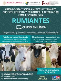 CURSO RUMIANTES EN LÍNEA JUNIO 2021