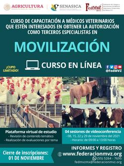 CURSO MVTEA MOVILIZACIÓN EN LÍNEA NOVIEMBRE 2021