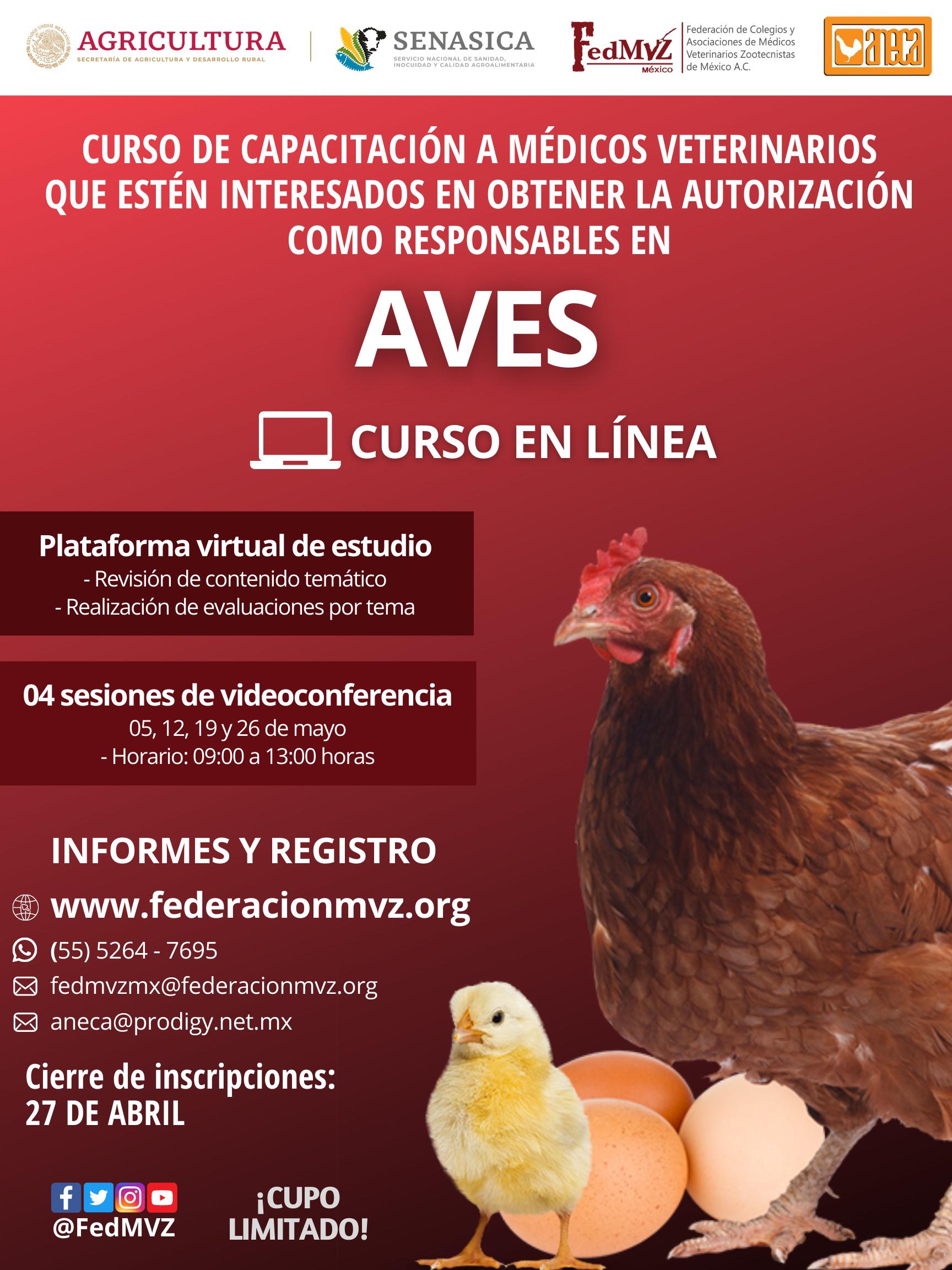 CURSO AVES EN LÍNEA MAYO 2021