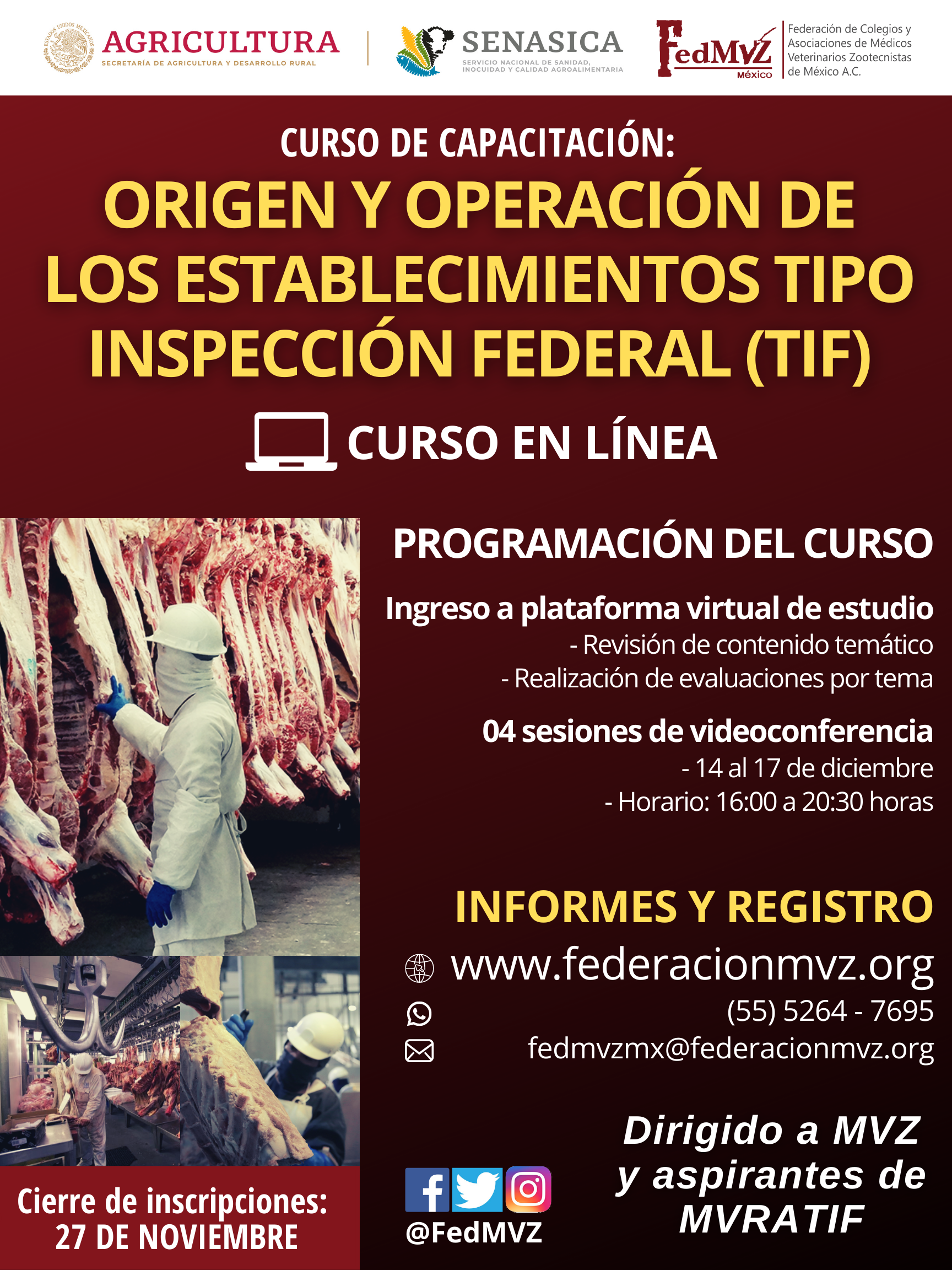 CURSO EN LÍNEA TIF DICIEMBRE 2020