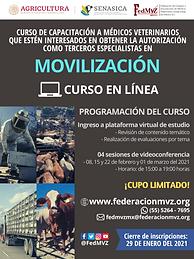 CURSO MOVILIZACIÓN EN LÍNEA FEBRERO 2021