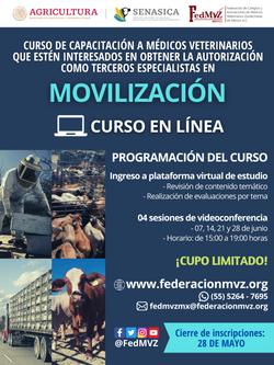 CURSO MOVILIZACIÓN EN LÍNEA JUNIO 2021