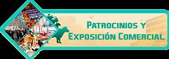 BOTON PATROCINIOS.png