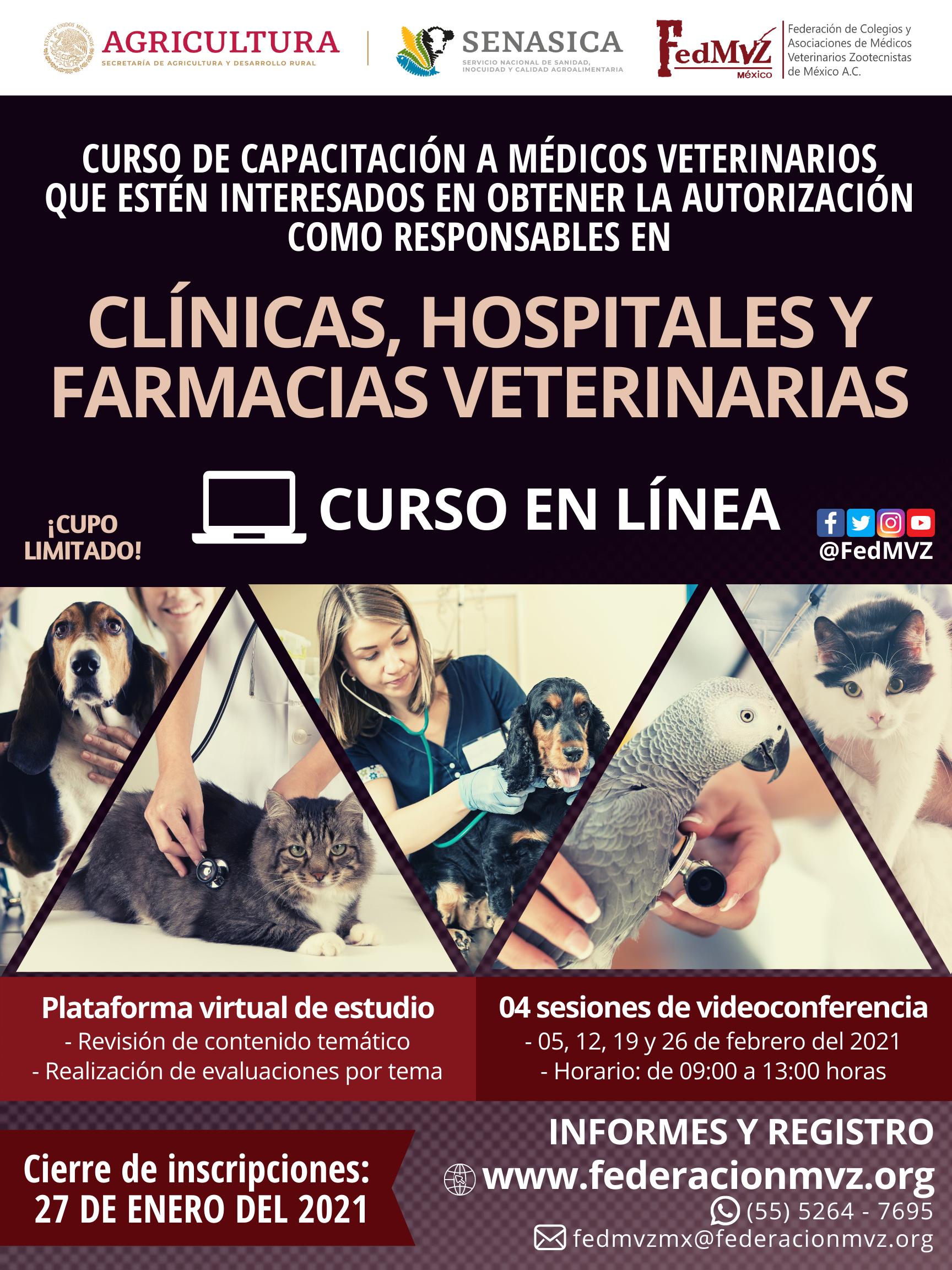 CURSO CLÍNICAS EN LÍNEA FEBRERO 2021