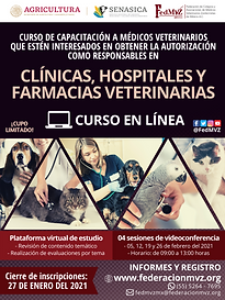 CURSO CLÍNICAS EN LÍNEA FEBRERO 2021.png