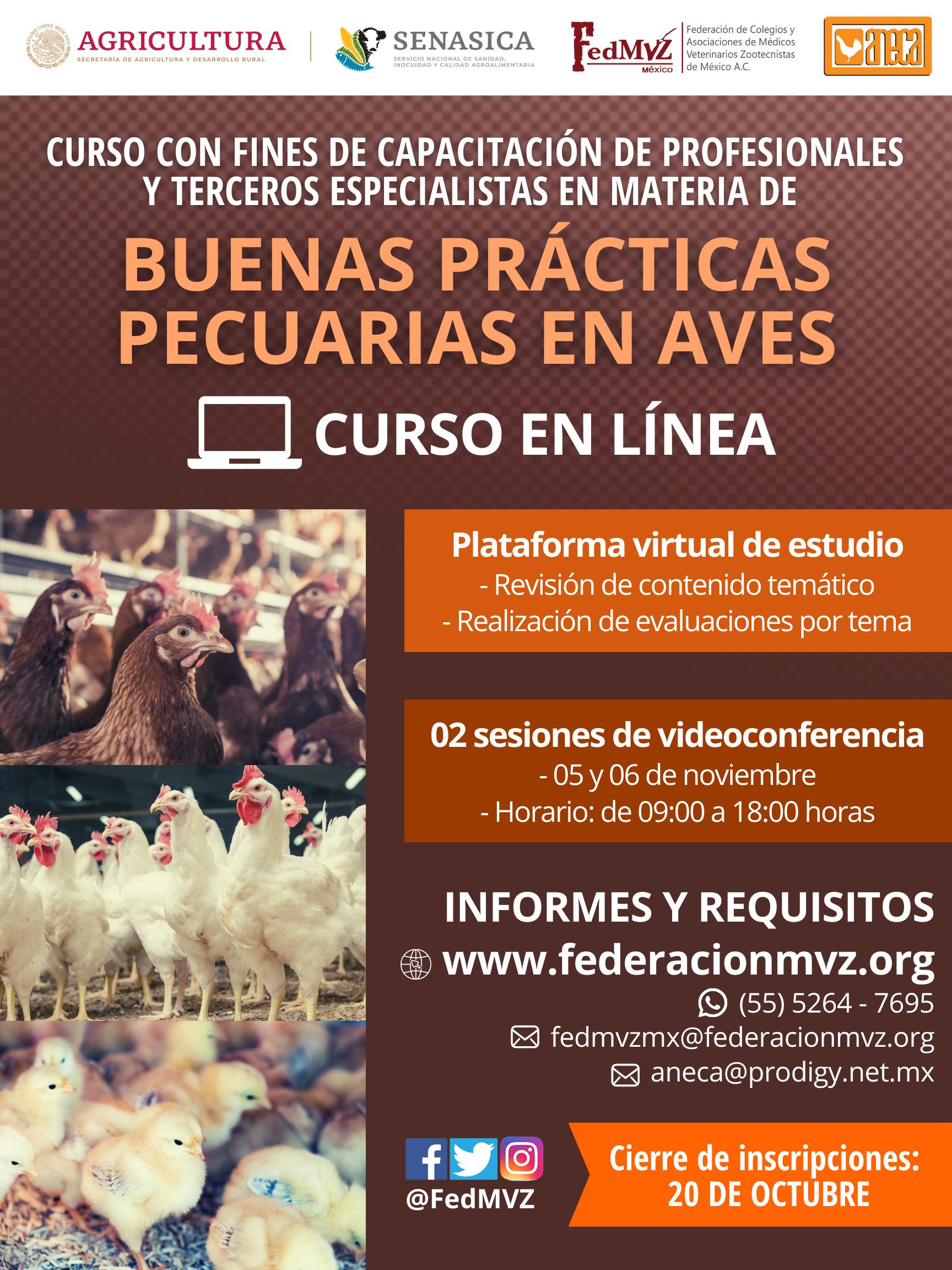 CURSO_BPP_AVES_EN_LÍNEA_NOVIEMBRE