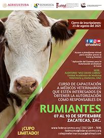 CURSO RUMIANTES ZACATECAS SEPTIEMBRE 2021.png