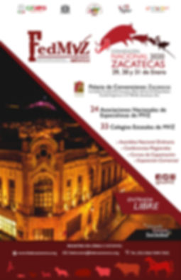 Cartel_Convención_Nacional_2020_FedMVZ.j