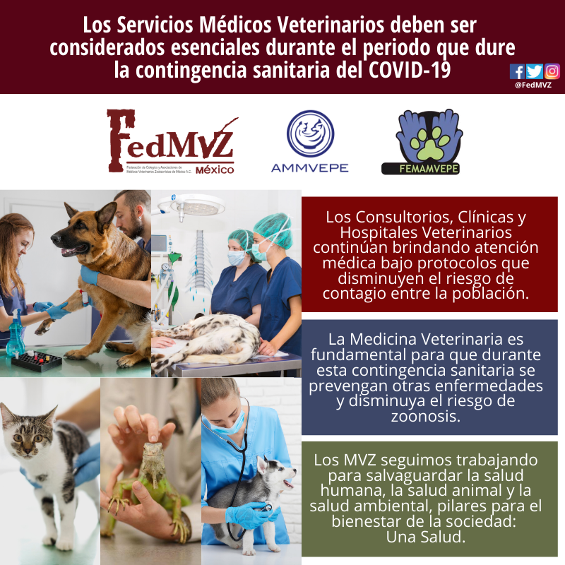 SERVICIOS VETERINARIOS ESENCIALES COVID-
