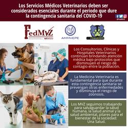 SERVICIOS VETERINARIOS ESENCIALES COVID-