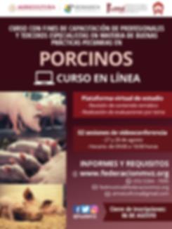 CURSO_BPP_PORCINOS_EN_LÍNEA_AGOSTO.png