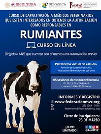 CURSO RUMIANTES EN LÍNEA ABRIL 2021.png