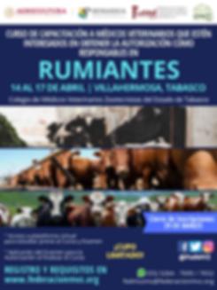 CURSO MVRA RUMIANTES TABASCO ABRIL 2020.