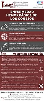 ENFERMEDAD HEMORRÁGICA DE LOS CONEJOS