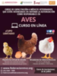 CURSO_MVRA_AVES_EN_LÍNEA_JULIO.png