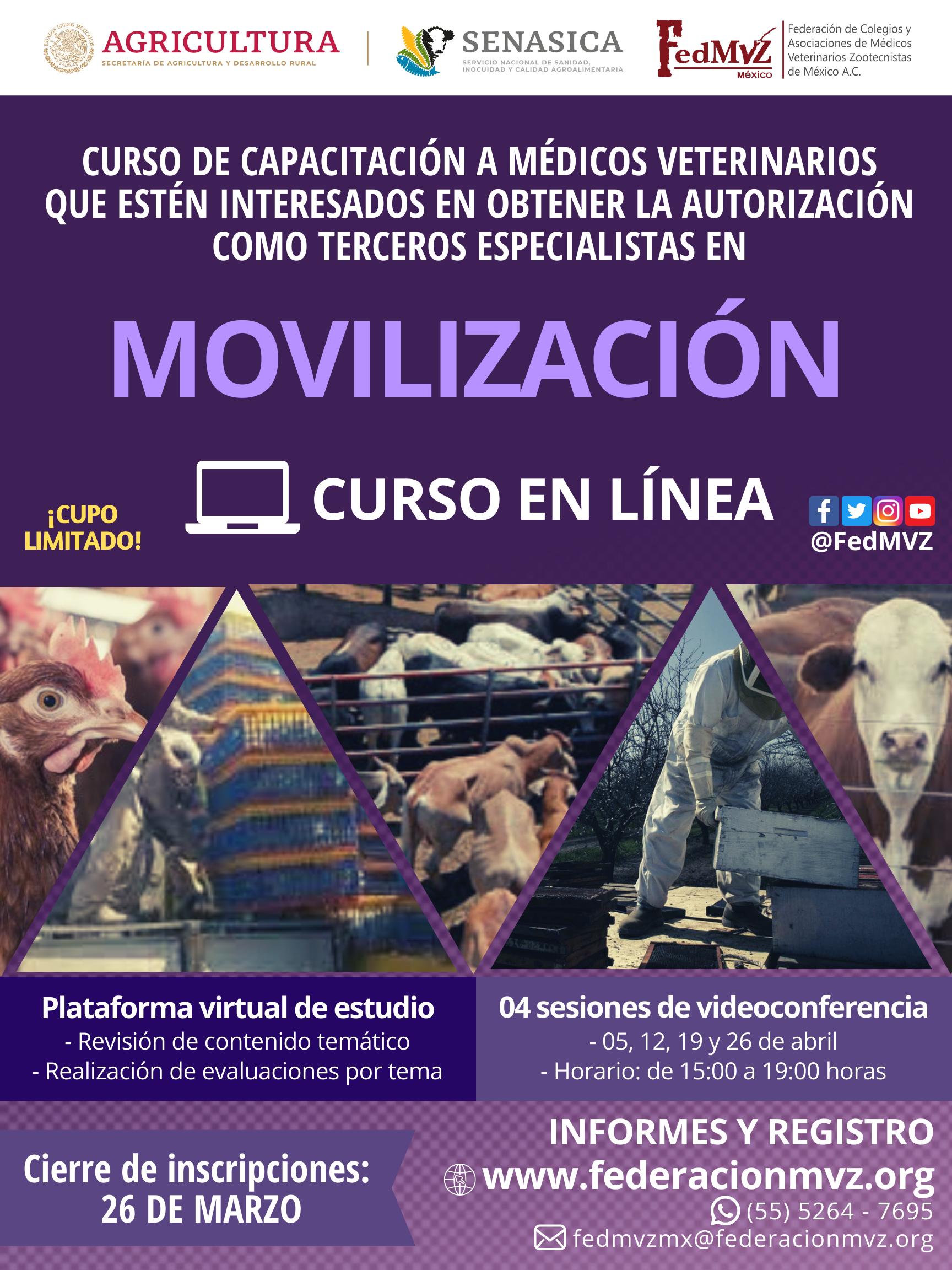 CURSO MOVILIZACIÓN EN LÍNEA ABRIL 2021