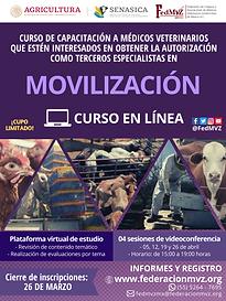 CURSO MOVILIZACIÓN EN LÍNEA ABRIL 2021.p