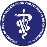 Logo Chihuahua PNG.png