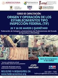 CURSO MVRA TIF QUERÉTARO MARZO 2021.png