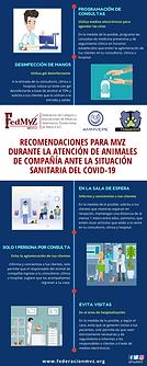 RECOMENDACIONES PARA MVZ DURANTE COVID-19