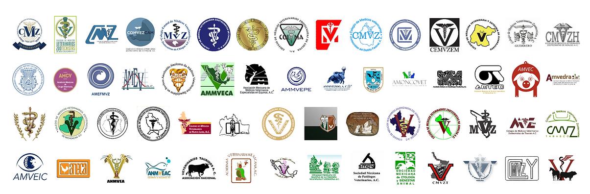 Logos socios FedMVZ 1.png