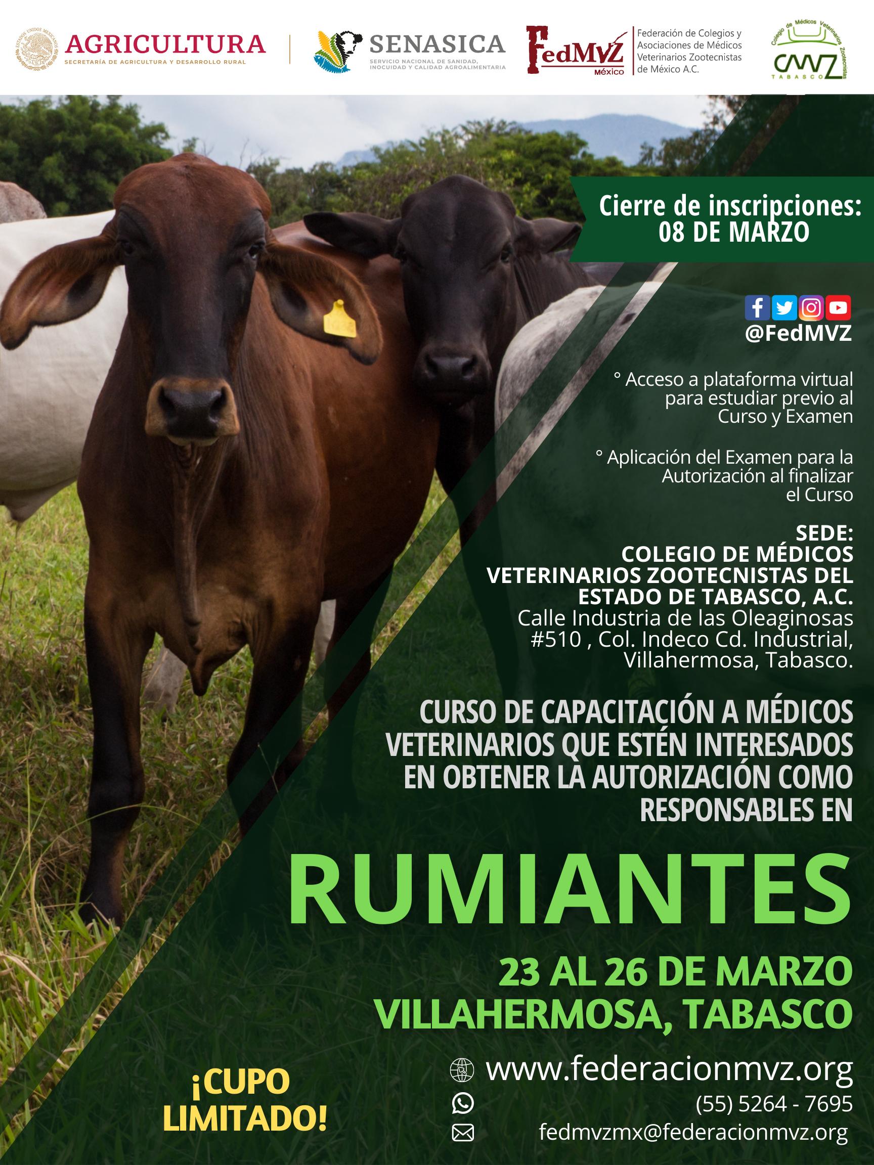 CURSO RUMIANTES TABASCO MARZO 2021