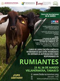 CURSO RUMIANTES TABASCO MARZO 2021.png
