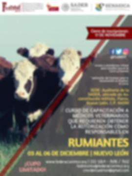 CURSO_MVRA_RUMIANTES_03_AL_06_DE_DICIEMB