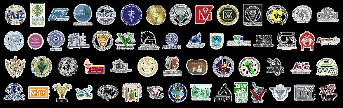 Logos socios FedMVZ sin suspendidos.png