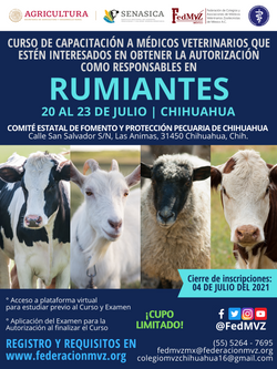 CURSO MVRA RUMIANTES CHIHUAHUA JULIO 2021