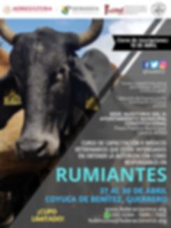 CURSO RUMIANTES ABRIL GUERRERO.png