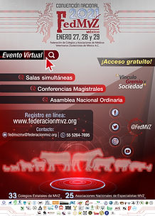 CARTEL FEDMVZ CONVENCION 2021 OK_Mesa de
