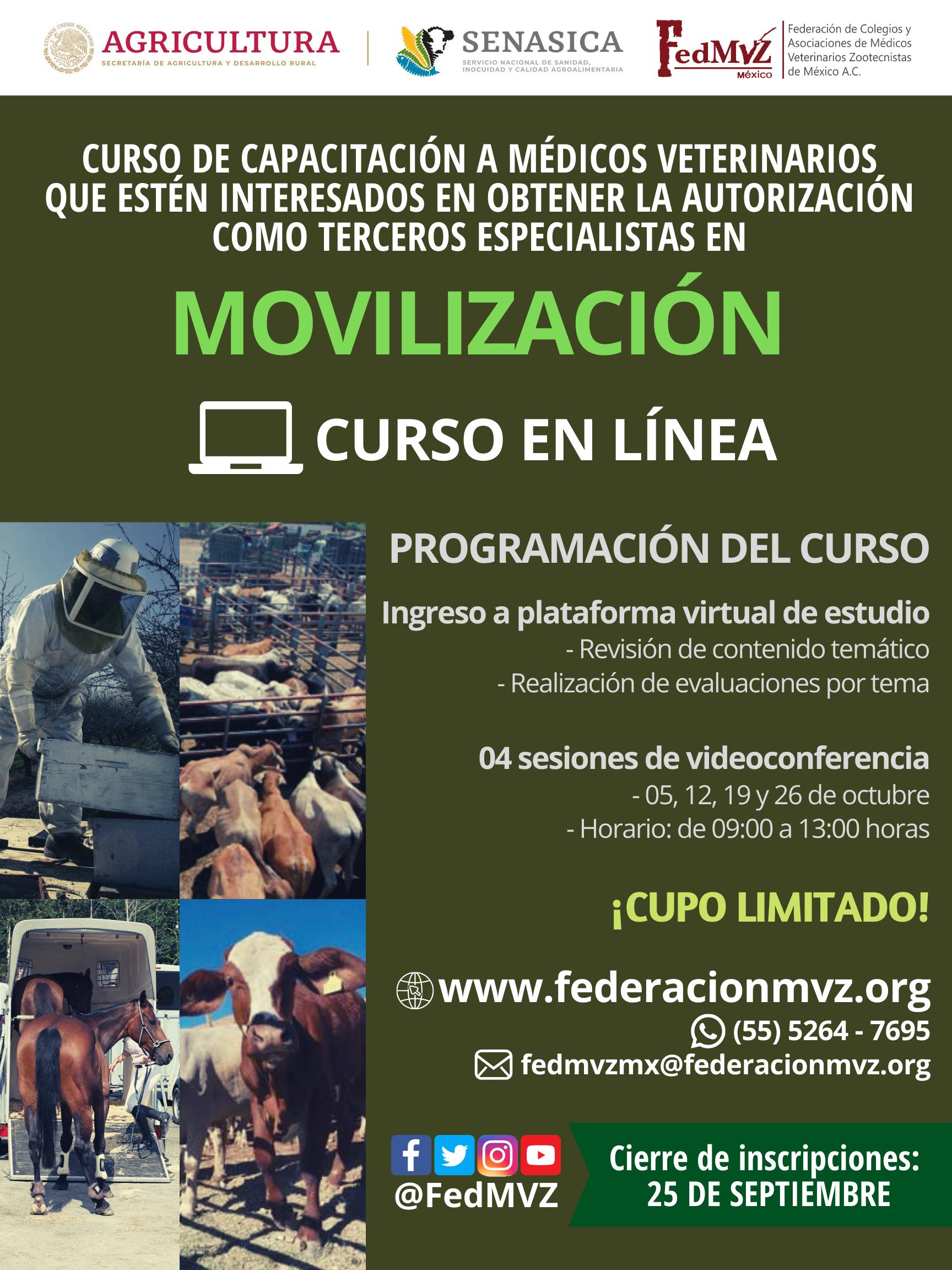 CURSO_MOVILIZACIÓN_EN_LÍNEA_OCTUBRE