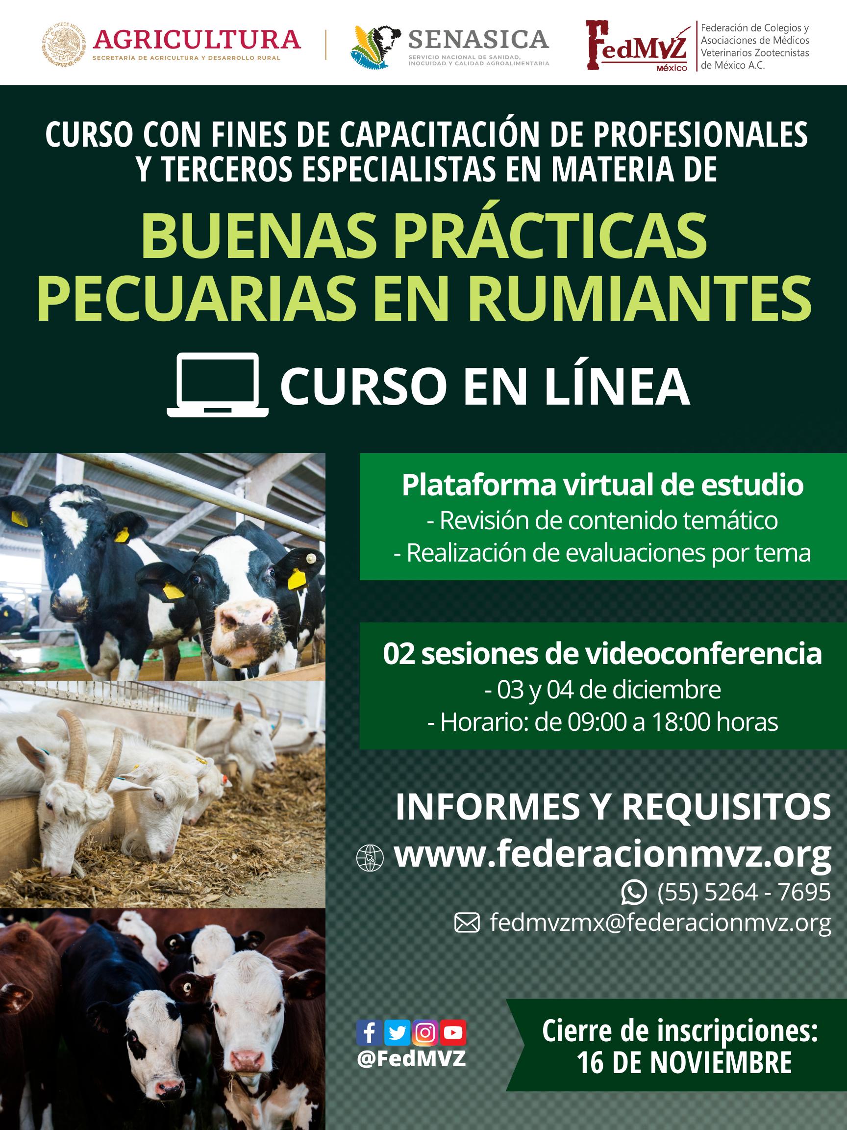 CURSO_BPP_RUMIANTES_EN_LÍNEA_DICIEMBRE.