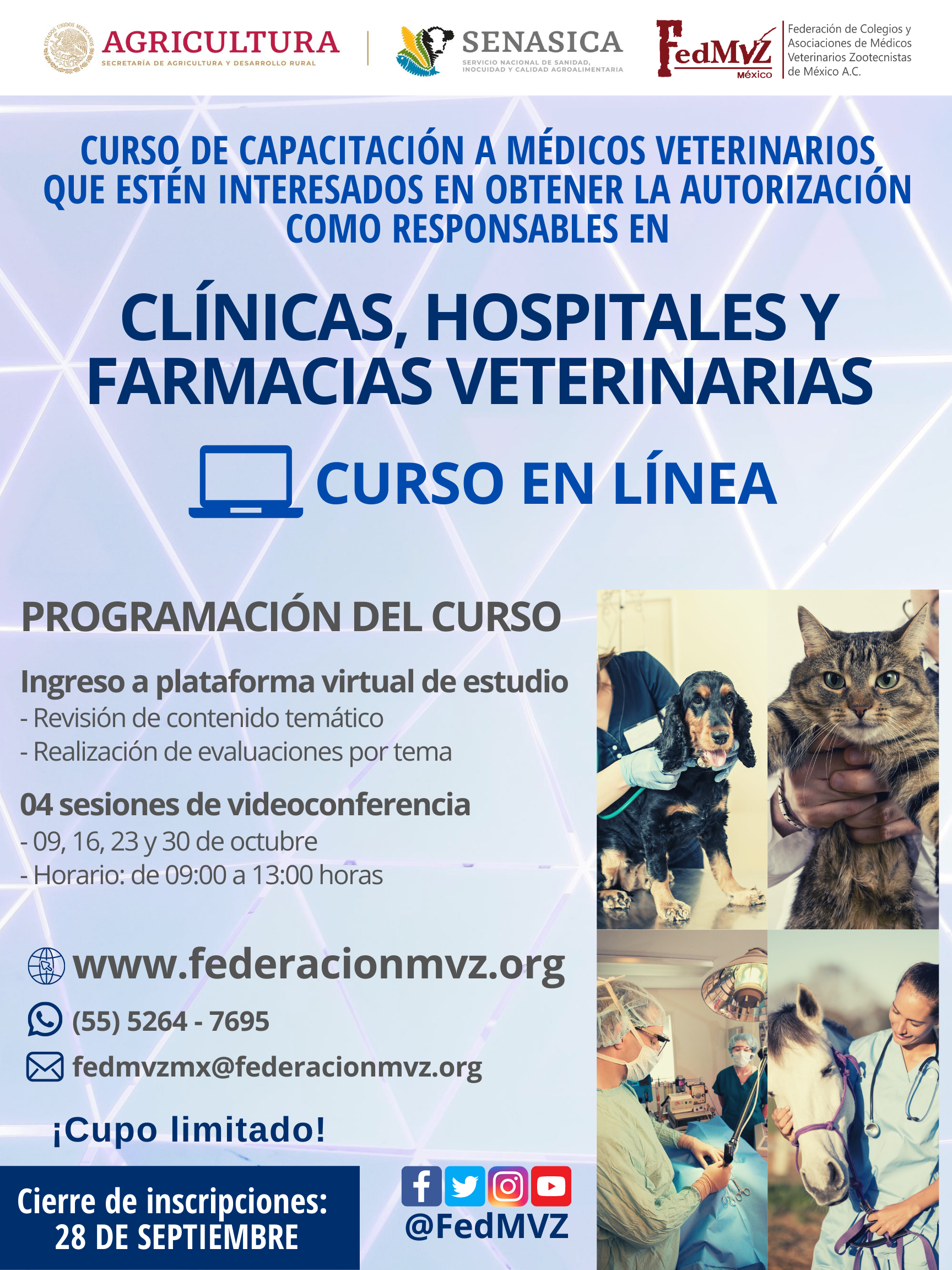 CURSO_MVRA_CLÍNICAS_OCTUBRE_2020