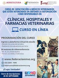CURSO_MVRA_CLÍNICAS_OCTUBRE_2020.png