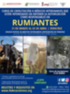 CURSO MVRA RUMIANTES VERACRUZ 2020.png
