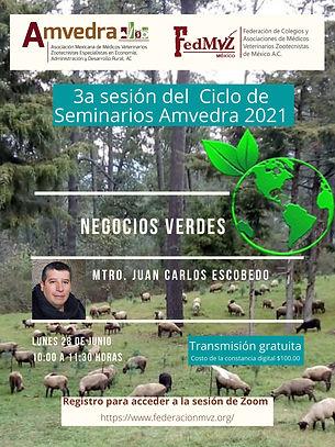 3a sesión Seminario AMVEDRA - Negocios v