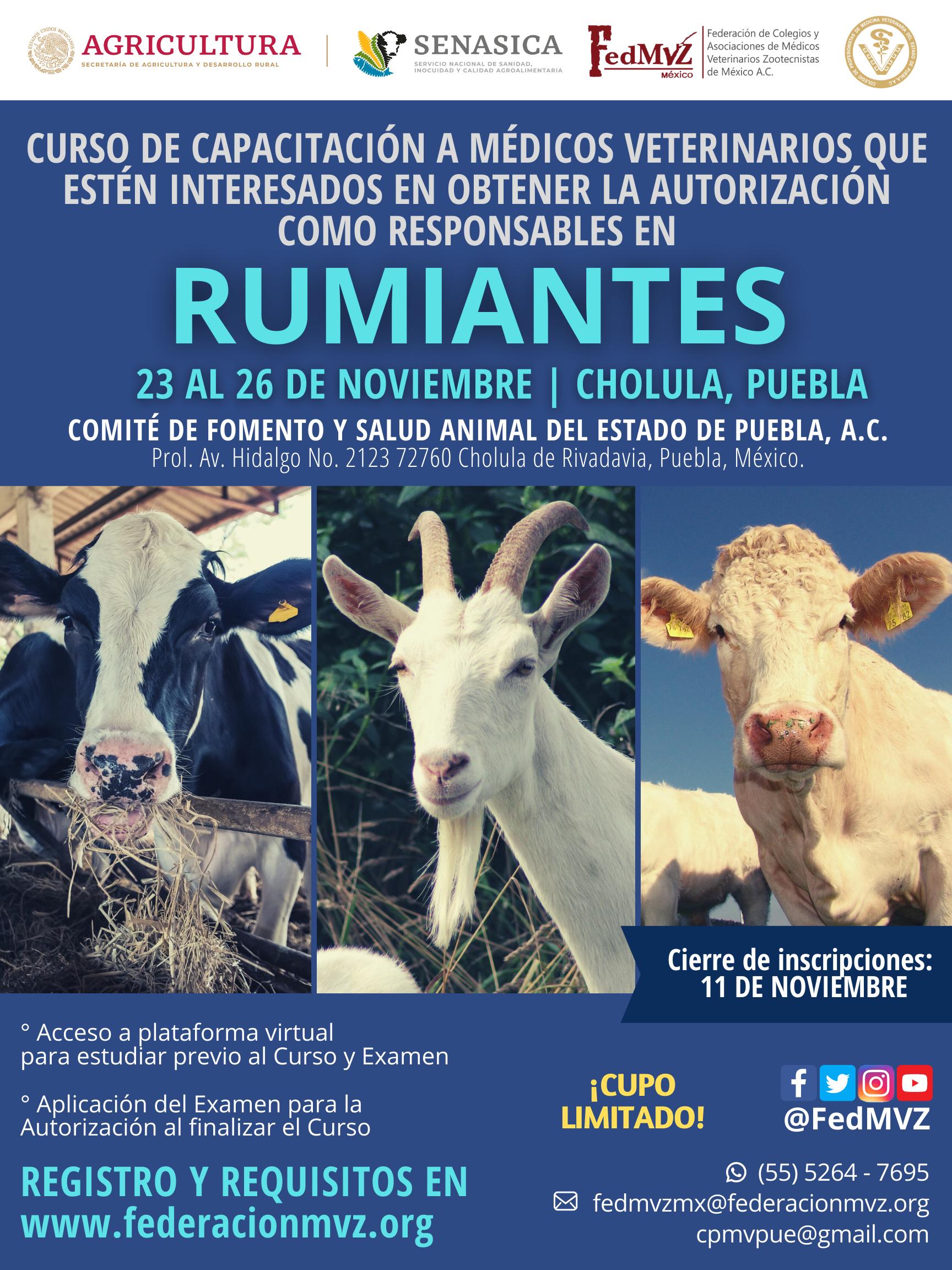 CURSO MVRA RUMIANTES PUEBLA NOVIEMBRE 20