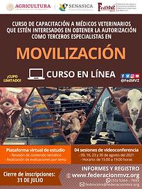 CURSO MOVILIZACIÓN EN LÍNEA AGOSTO 2021.png