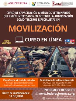 CURSO MOVILIZACIÓN EN LÍNEA AGOSTO 2021