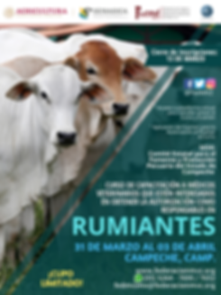 CURSO RUMIANTES 31 MARZO AL 03 DE ABRIL